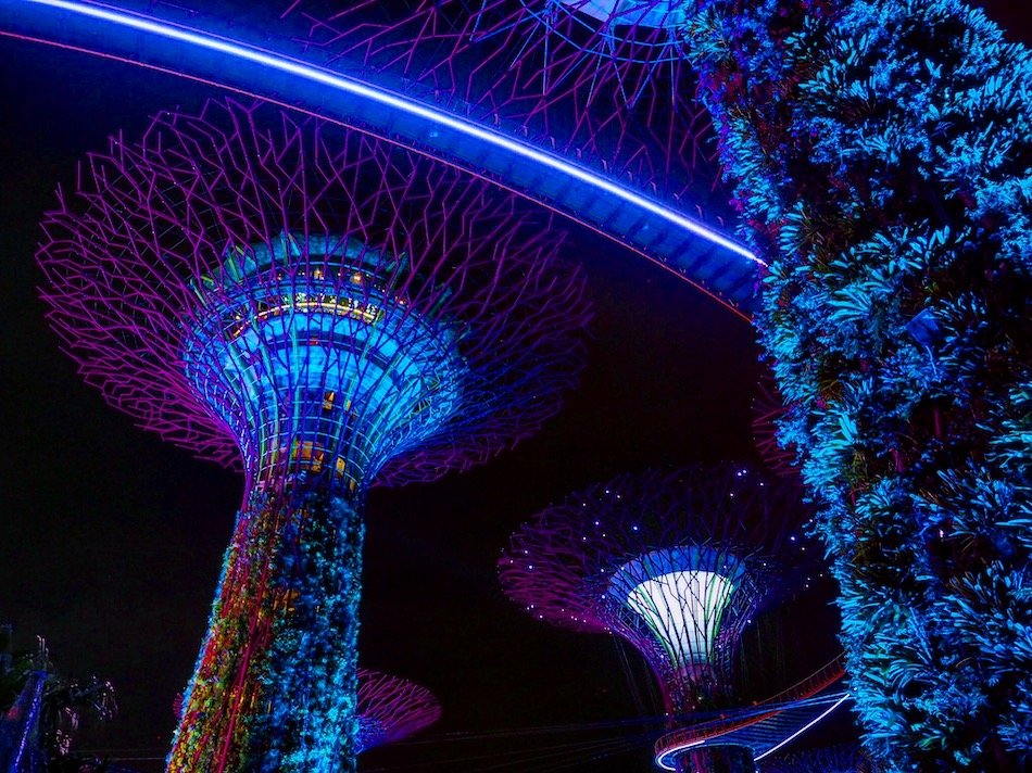 Neon light display in Singapore