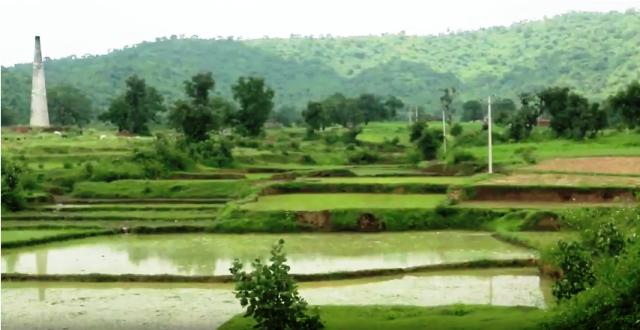 Grassy flood plains used for irregation